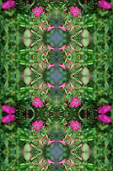 Small Pinks by Keri Renee