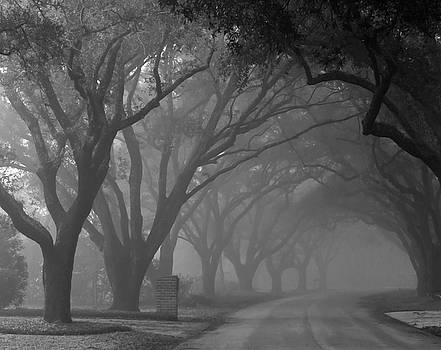Small Town Foggy Morning by Deborah Smith