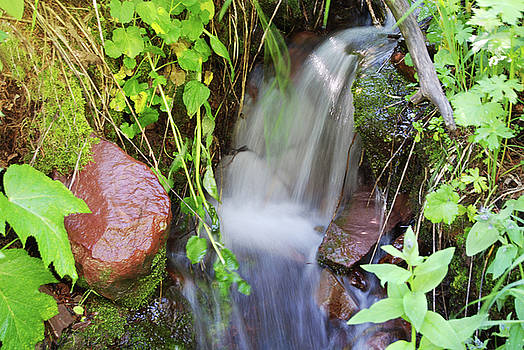 Small Waterfall at Maroon Bells - 1 by Eneida Gastal-Keith