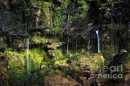 Small waterfall by Elena Elisseeva