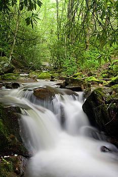 Jill Lang - Small Waterfall