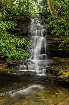 Small waterfalls in the forest. by Ulrich Burkhalter