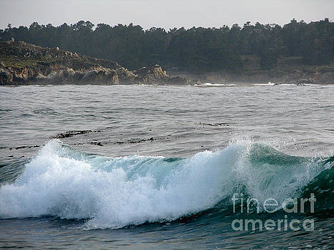 Small Wave on Carmel Bay by James B Toy