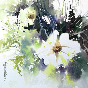 Small Wonders by Rae Andrews