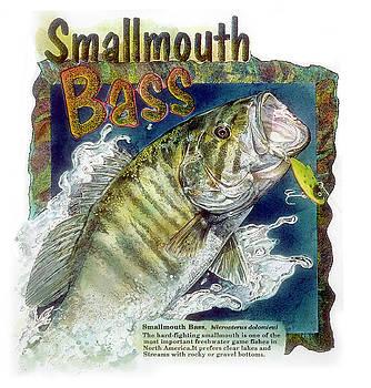 Smallmouth Bass by John Dyess