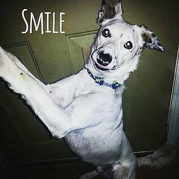 Smile by Patricia Olson