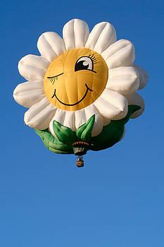 Smiling Daisy Hot Air Balloon by Nicolas Raymond