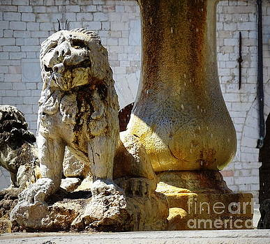 Smiling Fountain Lion by Lainie Wrightson