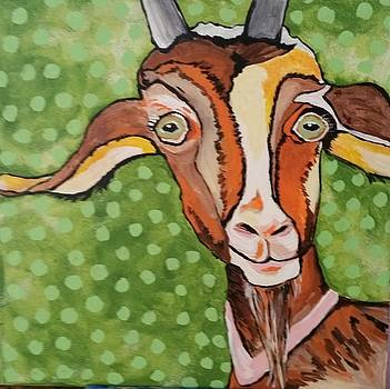 Smiling goat by Cindy Large