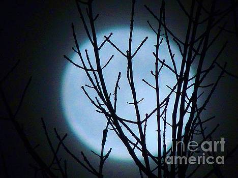 Smiling Super Moon by Lisa Gilliam