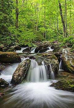 Smith Creek, Springtime by Tod Colbert