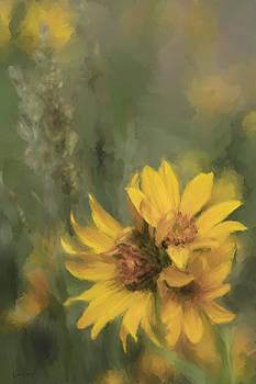 Smith River Balsamroot by Karen Forsyth