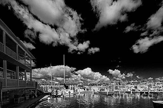 Smithfield Dock 5184T_I by Doug Berry