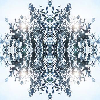 Jonny Jelinek - Enlightening Tree I