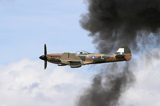 Smoke'n Spitfire  by Shoal Hollingsworth