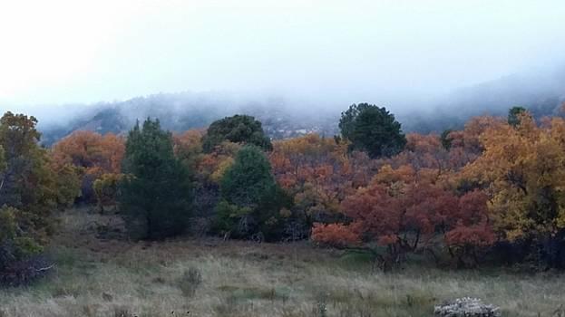 Smokey Colorado by Bret Sheppard
