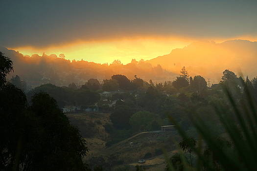 Smokey Sunrise In El Sobrante CA by Joyce Dickens