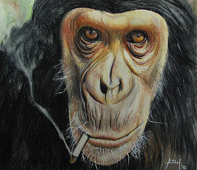 Smokin' Cool Monkey by Angela Hannah