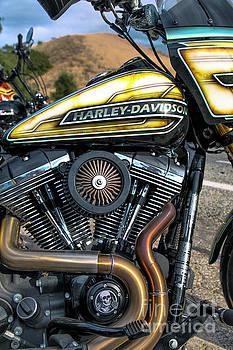 Smoking Hot Harley  by Mariola Bitner