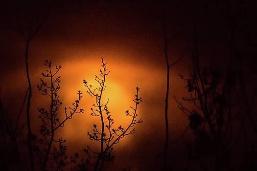 Smoky Moon by Jay Stockhaus