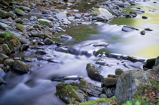 Smoky Mountain Creek by Cathie Crow
