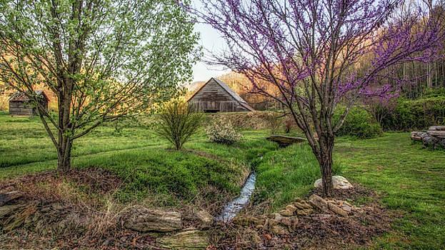 Smoky Mountain Spring by Johnny Crisp
