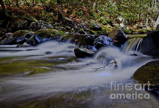 Smoky Mountain Stream by Douglas Stucky