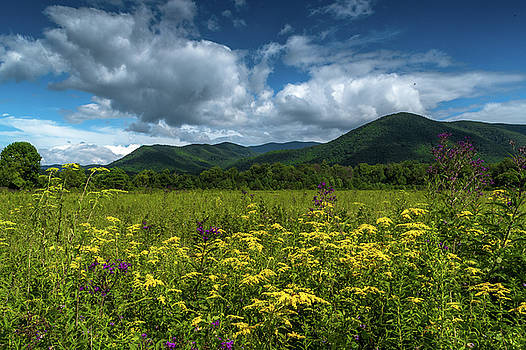 Smoky Mountain Summer by Eric Albright