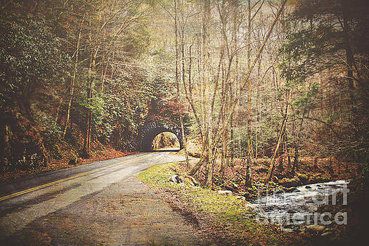 Smoky Mountain Tunnel and Stream by Joan McCool