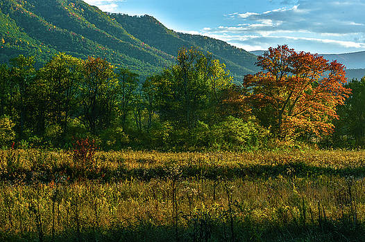 Smoky Mountain view by Eric Albright