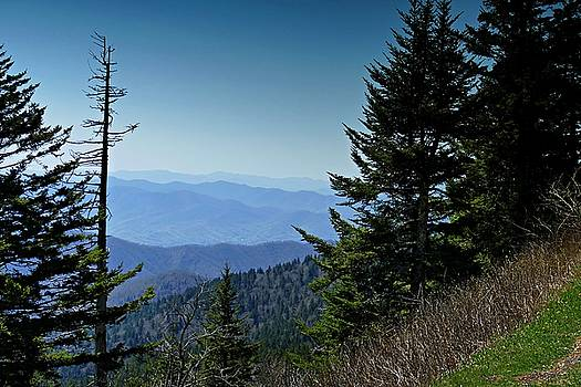Smoky Mountains Overlook by David Frankel