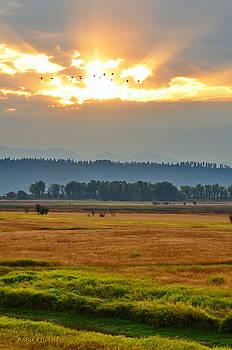 Smoky Sunrise Flight by Annie Pflueger