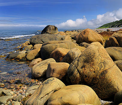Reimar Gaertner - Smoothed rust colored boulders on the shore of Martins Point whe