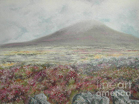 Stanza Widen - Snaefell Heather