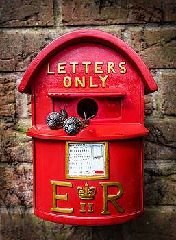 Snail Mail by Nick Bywater