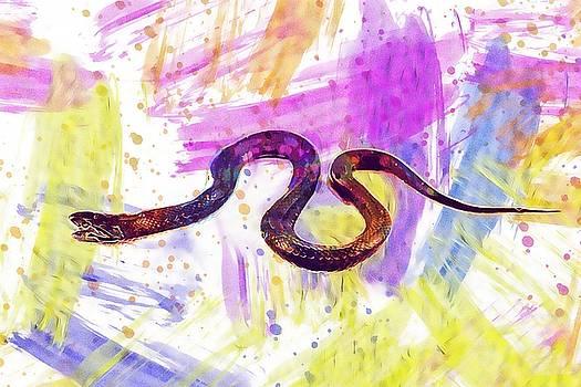 Snake Adder Serpent Reptile Animal  by PixBreak Art