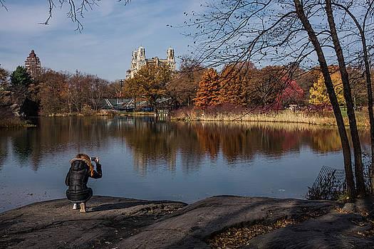 Snapping Turtle Pond by Cornelis Verwaal