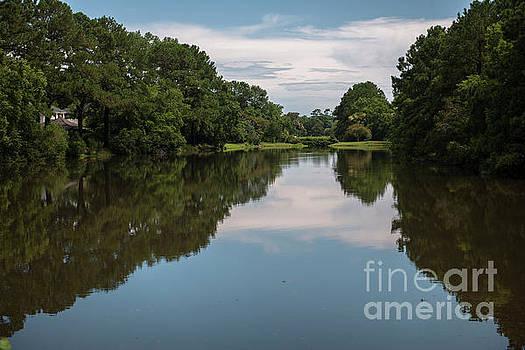 Dale Powell - Snee Farm Water Hazzard Reflections