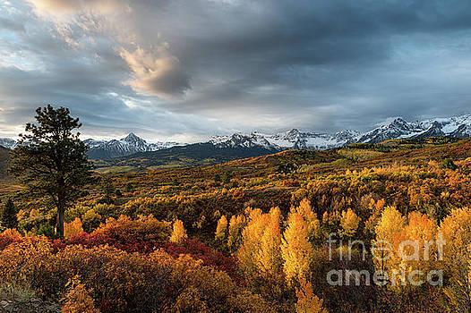 Sneffels Range in Fall #3 by Tibor Vari