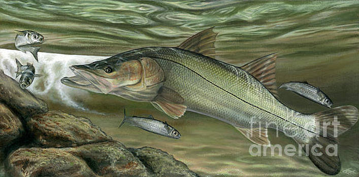 Snook Fast Food by Adrian E Gray