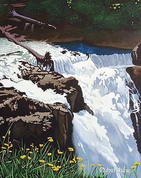 Snoqualmie Falls by Joe Roselle