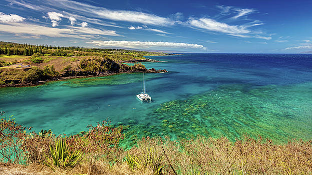 Snorkeling at Honolua Bay  by Pierre Leclerc Photography