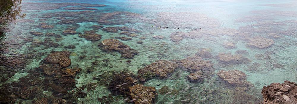 Ramunas Bruzas - Snorkeling In Pacific