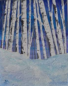 Snow and Birch by Joan Mace