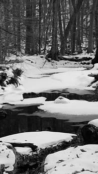 Snow and Water by Jennifer Fliegel