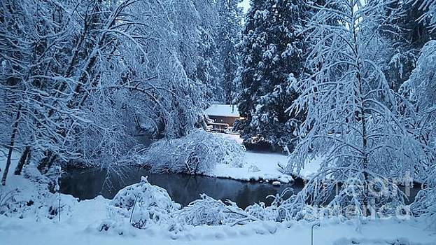 Snow At Dawn by Debra Kaye McKrill