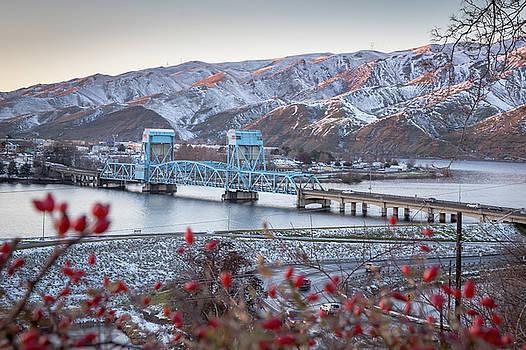 Snow Berry Bridge by Brad Stinson