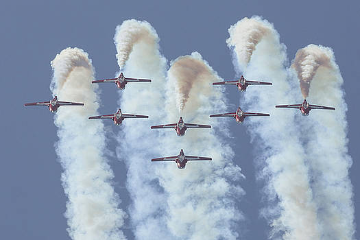 Snow Birds Inverted Loop by John Daly