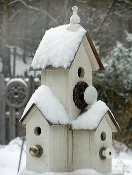 Snow Birds by Tim Mattox