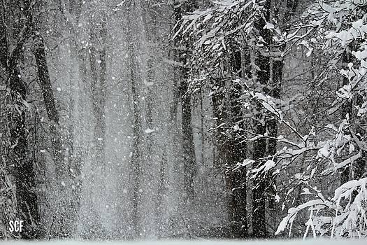 Snow Blown by Stacie Fernandes